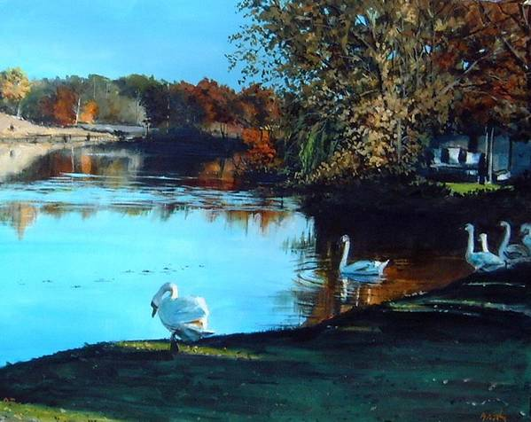 Pond Poster featuring the painting Mill Pond by William Brody