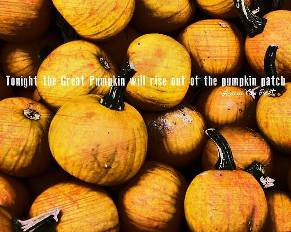 Pumpkin Poster featuring the photograph Mini Pumpkin Patch Quote by JAMART Photography