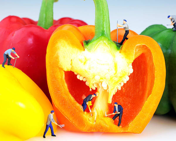 Pop Poster featuring the photograph Mining In Colorful Peppers by Paul Ge