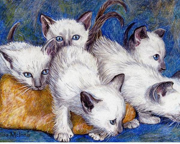 Cats Poster featuring the drawing Mischief Makers by Liisa McInnis