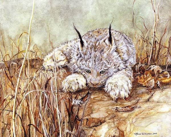 Lynx Kitten Poster featuring the painting Missed Lunch by Nonie Wideman
