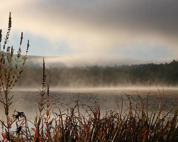 Misty Morning Poster featuring the photograph Misty Morning by Linda Russell