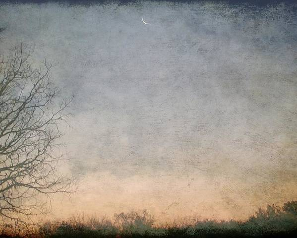 Poster featuring the photograph Misty Morning Moon by Luciana Seymour