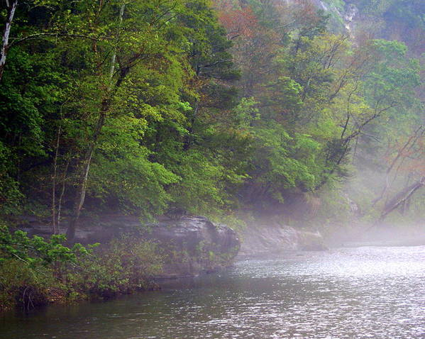 Buffalo National River Poster featuring the photograph Misty Morning On The Buffalo by Marty Koch