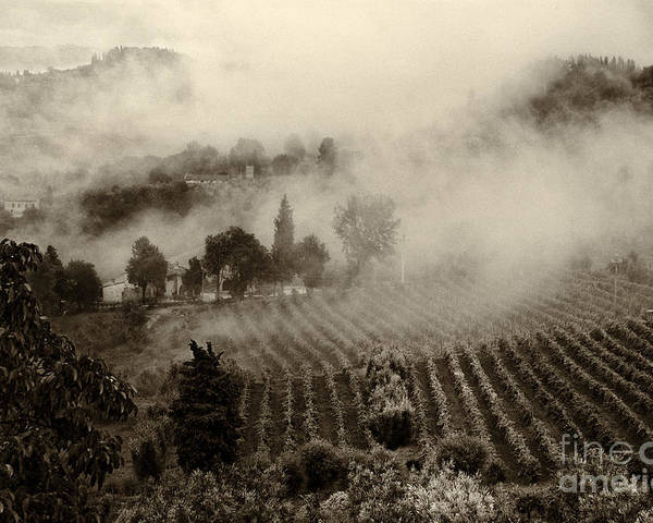 Tuscany Poster featuring the photograph Misty Morning by Silvia Ganora
