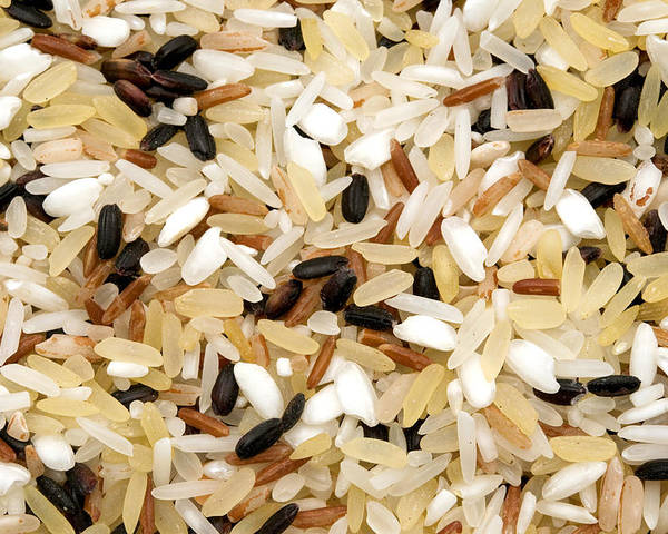 White Background Poster featuring the photograph Mixed Rice by Fabrizio Troiani