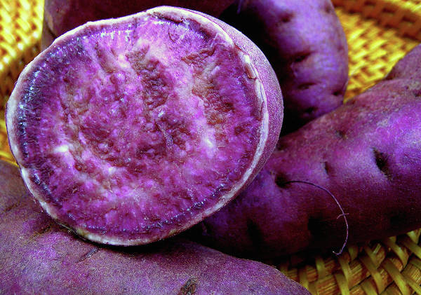 James Temple Poster featuring the photograph Moloka'i Purple Sweet Potatoes by James Temple