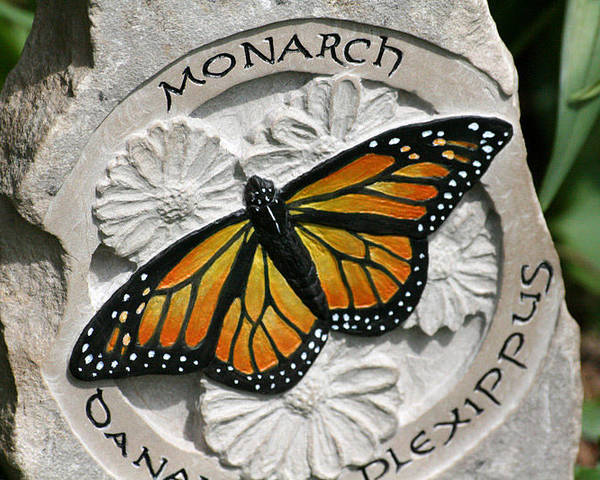 Limestone Poster featuring the sculpture Monarch by Ken Hall