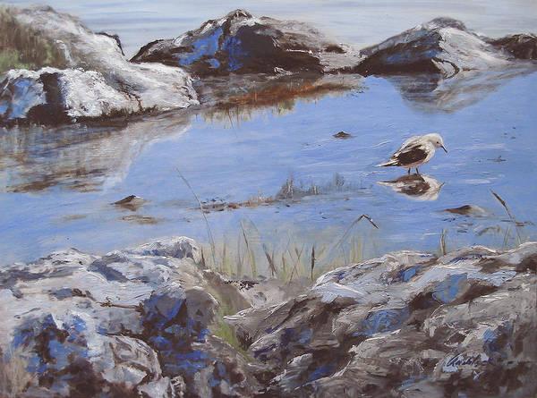 Animal Poster featuring the painting Mono Lake by Barbara Andolsek
