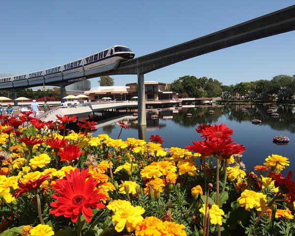 Flowers Poster featuring the photograph Monorail At Disney's Epcot by Carl Purcell
