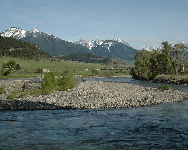 Stream Poster featuring the photograph Montana Stream by Kathy Schumann