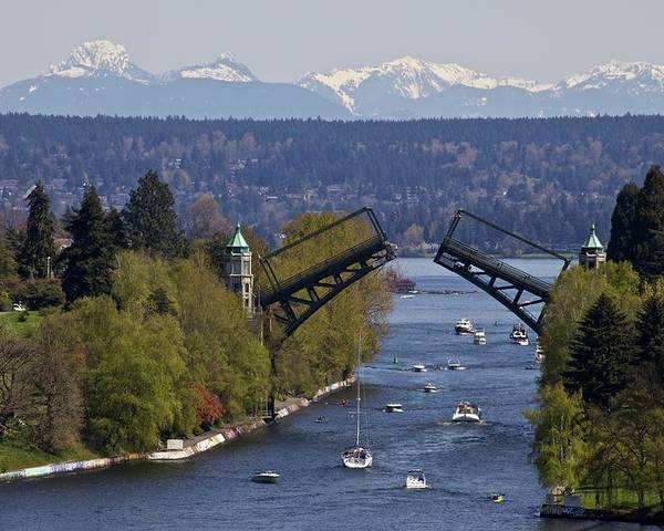Horizontal Poster featuring the photograph Montlake Bridge And Cascade Mountains by C. Chase Taylor