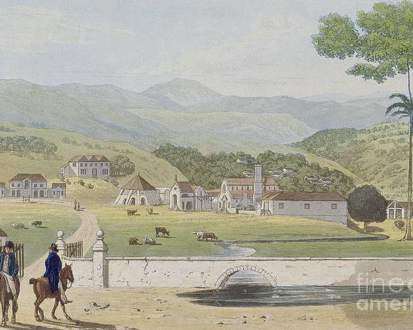 Montpelier Poster featuring the painting Montpelier Estates - St James by James Hakewill