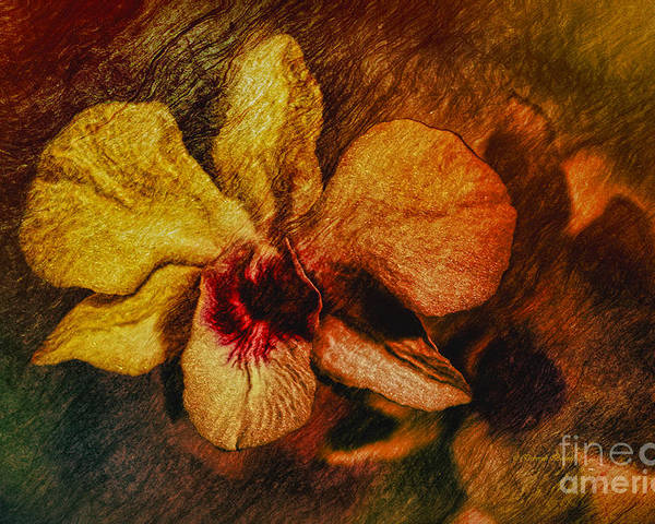 Orchid Poster featuring the painting Mood Of The Orchid by Deborah Benoit