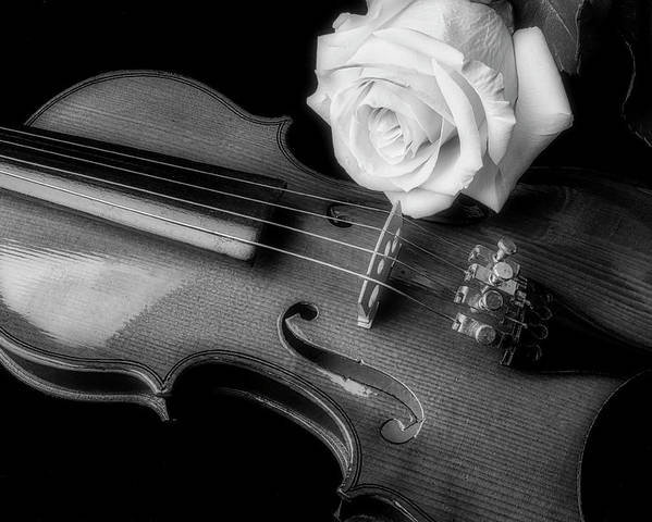 White Poster featuring the photograph Moody Violin And Rose In Black And White by Garry Gay