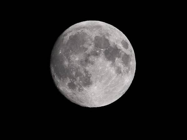 Moon Poster featuring the photograph Moon Glow by Randi Seaman