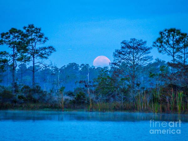 Moon Poster featuring the photograph Moonset At The Hungryland by Tom Claud