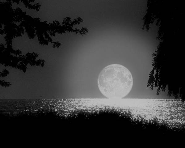 Moon Poster featuring the photograph Moonset On Lake Erie by Kenneth Krolikowski