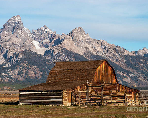 Jackson Hole Poster featuring the photograph Mormon Barn by Bob Phillips