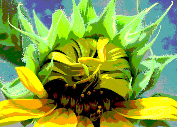 Sunflowers Poster featuring the photograph Morning Awakening by Lori Mellen-Pagliaro