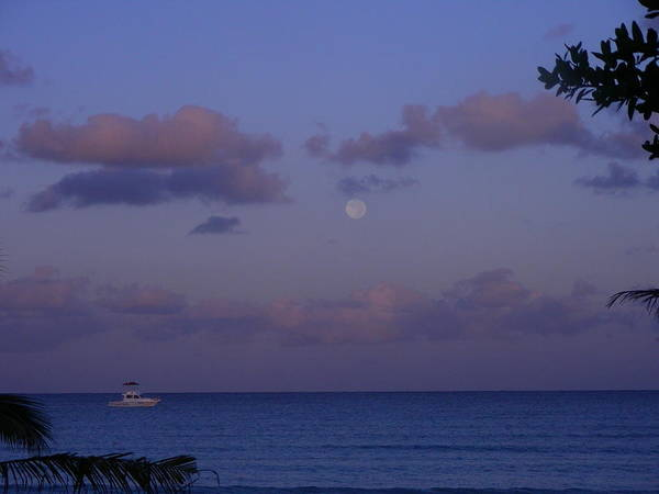 Nature Poster featuring the photograph Morning Moon by Peter McIntosh