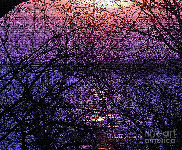 Sunset Poster featuring the photograph Mosaic Sunset by Scott Heister