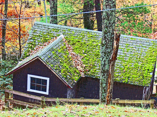 Cabin Poster featuring the photograph Moss Roof by Beebe Barksdale-Bruner
