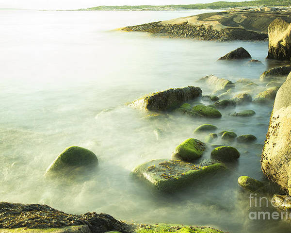 Moss Poster featuring the photograph Mossy Rocks On Shoreline by Nick Jene