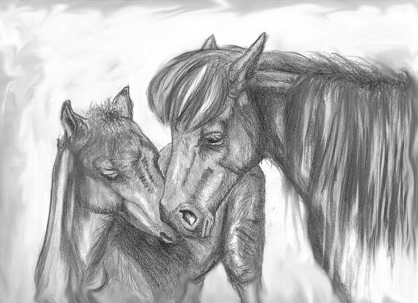 Mother Poster featuring the drawing Mother And Foal by Crystal Suppes