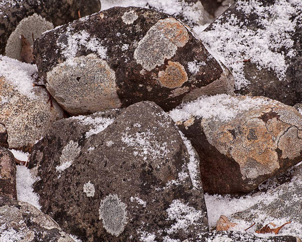 Rocks Poster featuring the photograph Mottled Stones by Irwin Barrett