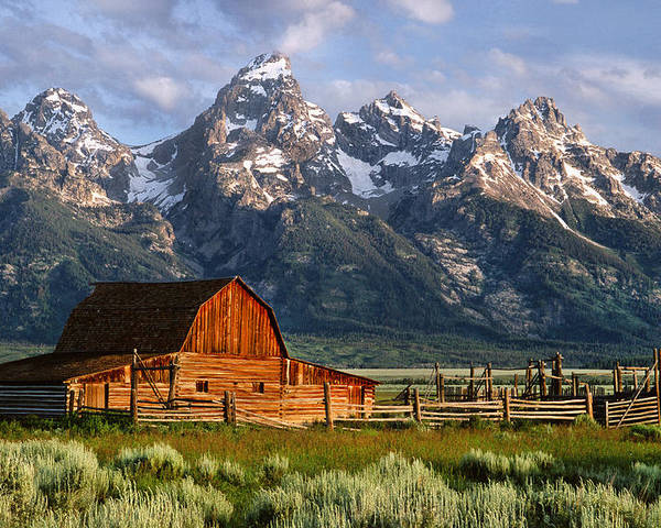 Teton Poster featuring the photograph Moulton Barn by Randall Roberts