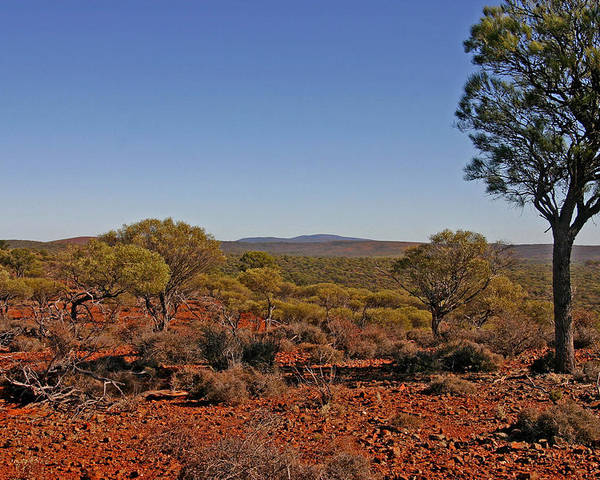 View To Mt Singleton From Homestead Ridge Trail. This Area Of Western Australia Is Rich In Iron Ore Poster featuring the photograph Mount Gibson Station Wa by Tony Brown
