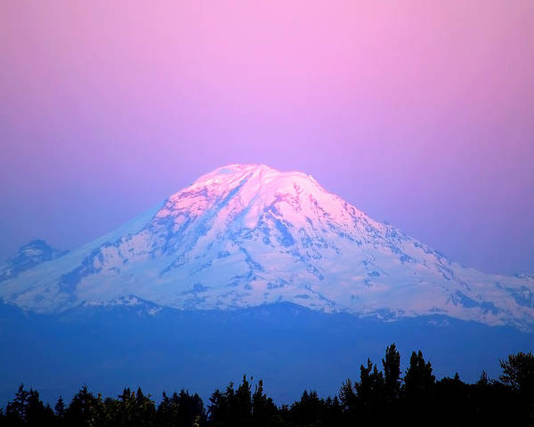 Mount Rainier Poster featuring the photograph Mount Rainier by Richard Steinberger
