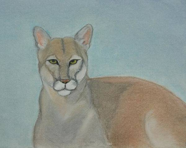 Mountain Lion Poster featuring the painting Mountain Lion - Pastels - Color - 8x12 by B Nelson