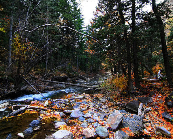 Autumn Poster featuring the photograph Mountain Stream by Mark Smith