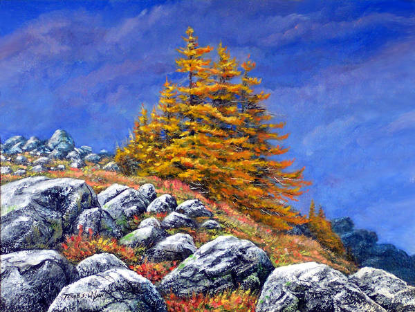 Mountains Poster featuring the painting Mountain Tamaracks by Frank Wilson