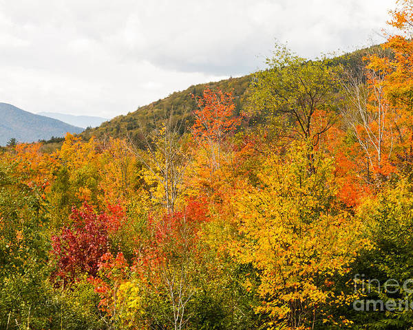 Kanacamangous Highway Poster featuring the photograph Mountains In The Fall Colors by Terri Morris