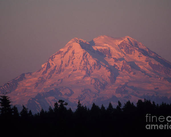Glaicier Poster featuring the photograph Mt. Rainier Washington by Robert Torkomian