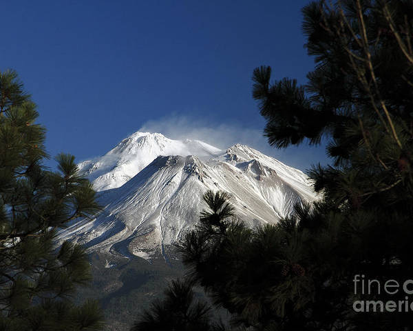 Mountain Poster featuring the photograph Mt Shasta California Through Trees by Marland Howard