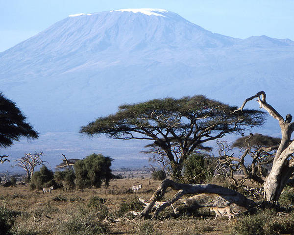 Worsley Poster featuring the photograph Mt.kilimanjaro by Wade Worsley