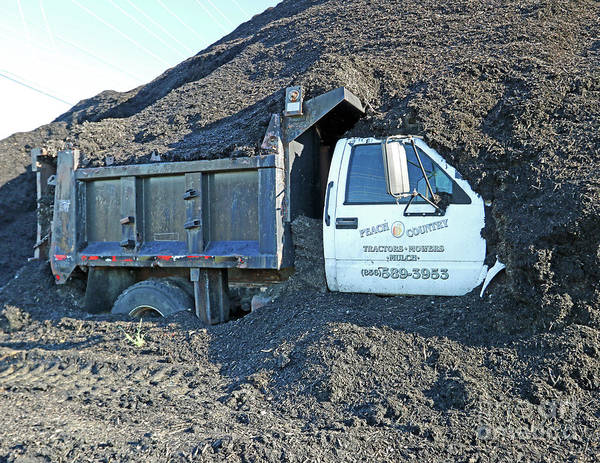 Truck Poster featuring the photograph Mulched by Steve Gass