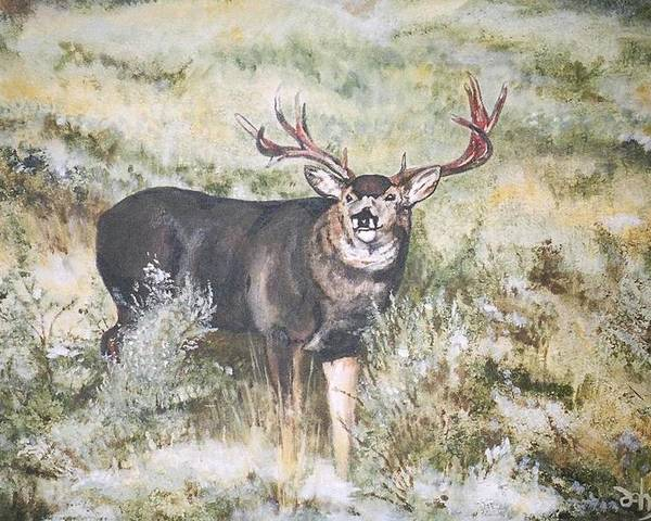 Mule Deer Poster featuring the painting Muley by Debra Sandstrom