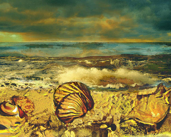 Mussels Poster featuring the painting Mussels On The Beach by Anne Weirich
