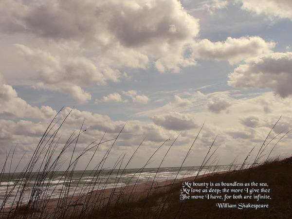 Seascape Poster featuring the photograph My Bounty by Judy Waller