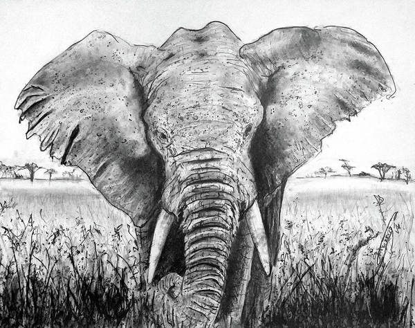 My Friend The Elephant Ii Poster featuring the drawing My Friend The Elephant II by Jose A Gonzalez Jr