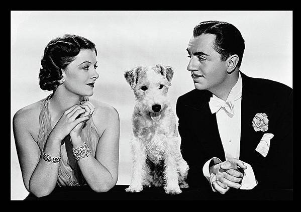 Myrna Loy Asta William Powell Publicity Photo The Thin Man 1936 Poster featuring the photograph Myrna Loy Asta William Powell Publicity Photo The Thin Man 1936 by David Lee Guss