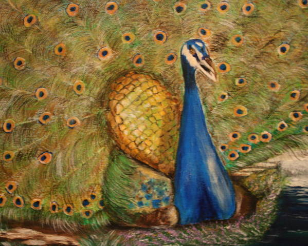 Peacock Poster featuring the painting Nbc Pride by Dyanne Parker