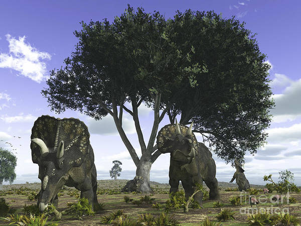 Mesozoic Era Poster featuring the digital art Nedoceratops Graze Beneath A Giant Oak by Walter Myers