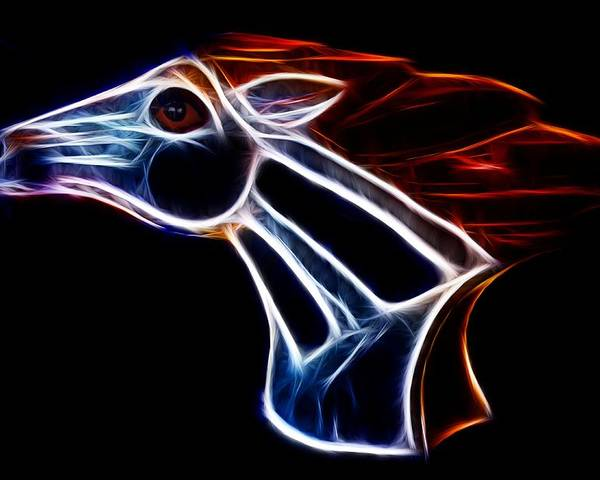 Bronco Poster featuring the photograph Neon Bronco II by Shane Bechler