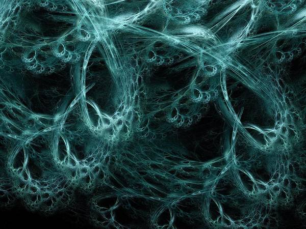 Nerve Cell Poster featuring the photograph Neural Network, Abstract Artwork by Laguna Design